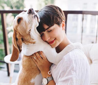 O firme Sponzia, ktorá sa zaoberá chovateľskými potrebami pre psy a mačky