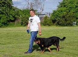Celodenné kurzy aj bez psa alebo so psom.